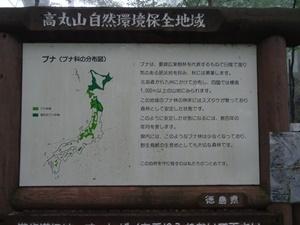 千年の森2.JPG