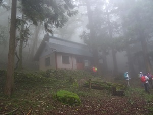 千年の森5.JPG