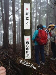千年の森7.JPG