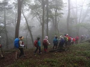 千年の森9.JPG